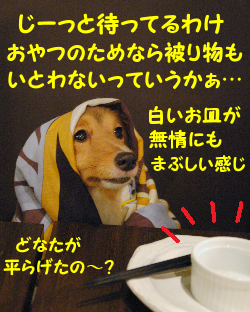 Dsc_0798_fv